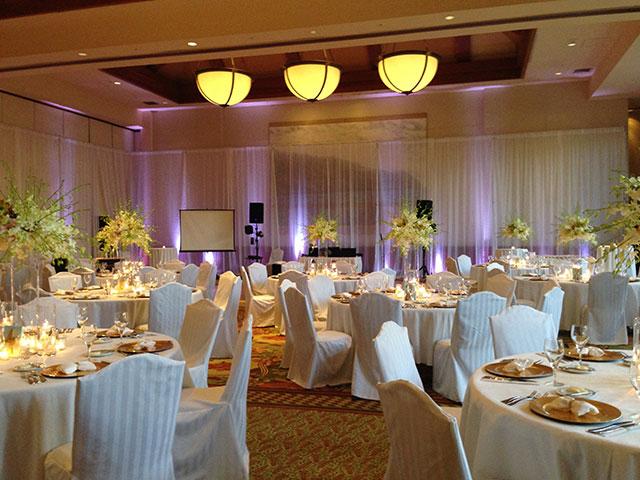 Elegant Wedding with Uplighting on Screens